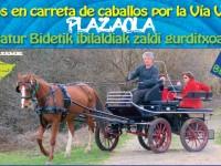 Paseos en carreta de caballos por la vía verde de Plazaola en Navarra