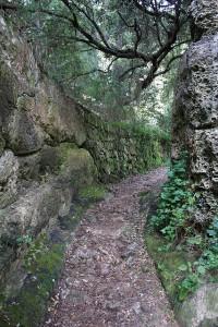 Barranc d Algendare